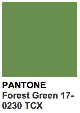 forest green pantone colors