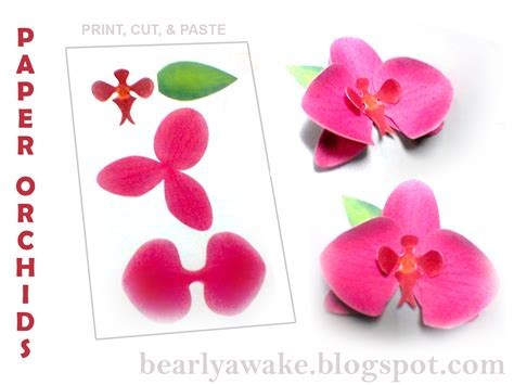 paper orchid flower pattern di s dilights make your own paper orchids