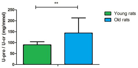 protein 0 15 urine potential urinary aging markers of 20 month rats peerj