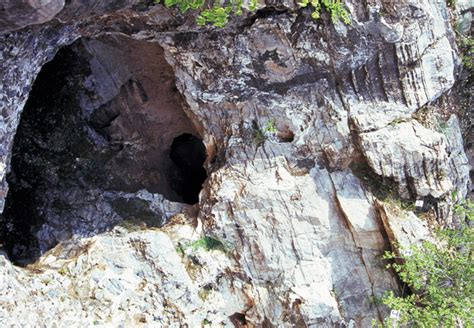Free South African House sterkfontein caves
