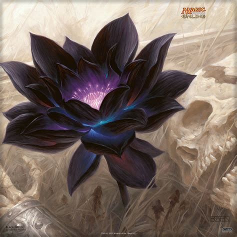 magic gathering black lotus wallpaper of the day black lotus magic the gathering
