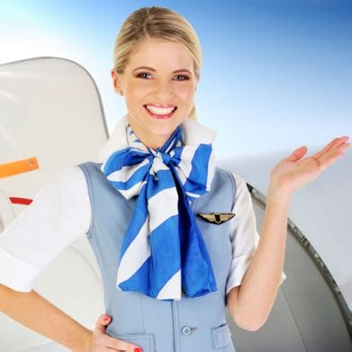 air cabin crew courses air cabin crew national open college
