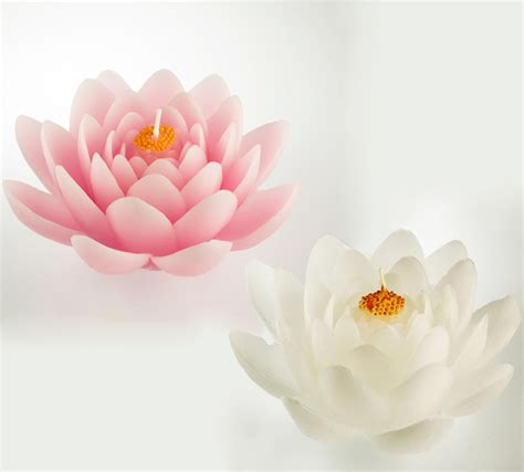 forme per candele candela ninfea galleggiante candele a fiore e forme