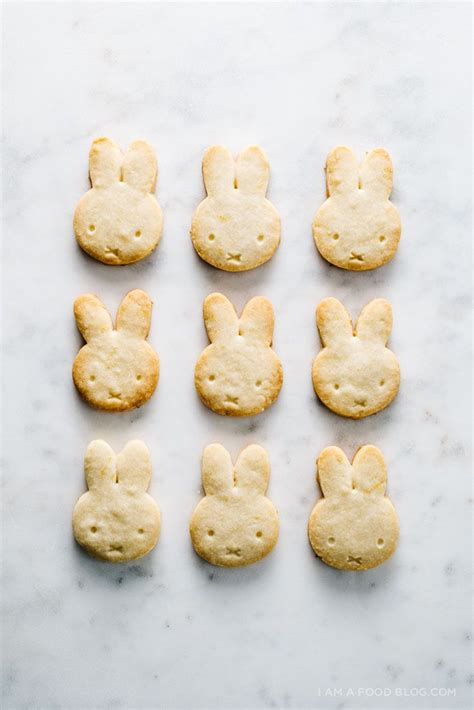 best shortbread cookies recipe best 25 lemon shortbread cookies ideas on
