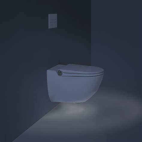 wozu benutzt ein bidet benutzung bidet washroom on board eurocity