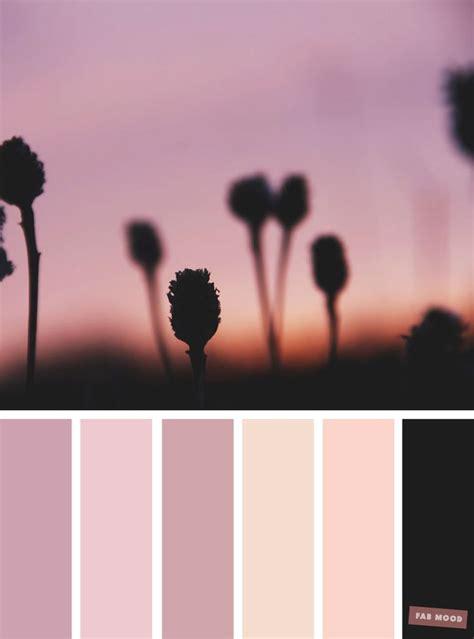 mauve color scheme best 25 blush color palette ideas on pink