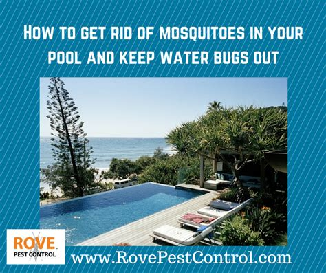 how to control mosquitoes in your backyard how to get rid of mosquitoes in your backyard 28 images