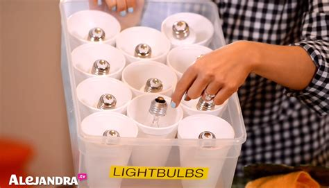 Light Storage by How To Organize Light Bulbs