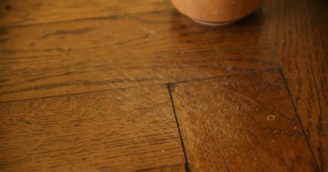 Removing Scratches From Hardwood Floors by Diy How To Remove Scratches From Hardwood Floors