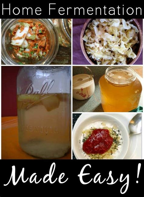 diy flower food recipe that will change your life easy home fermentation recipes that will change your life