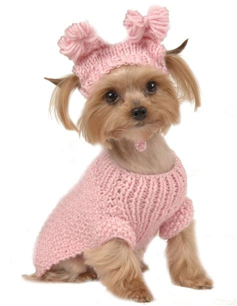 puppy shirts 25 best crochet clothes ideas on