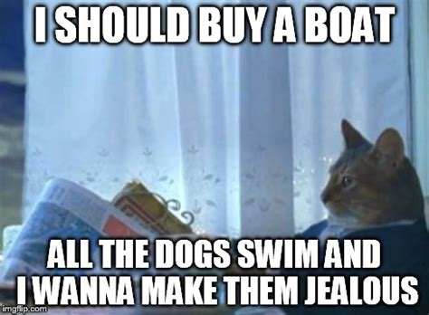 I Should Buy A Boat Cat Meme - i should buy a boat cat meme imgflip