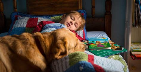 service dogs for autism service dogs for children with autism paws with a cause