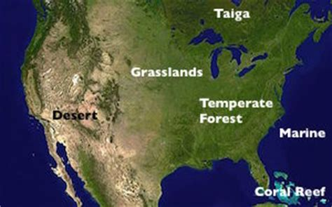 biomes of the united states map enotes study guides lesson plans homework help answers