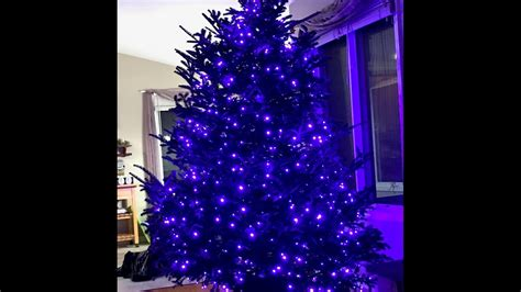 christmas tree lighting installed how to install tree lights purple 5mm