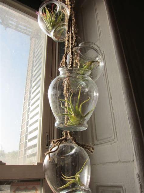 Air Plant Chandelier Chamomile Peppermint Best Of Plant Hanger Diy S