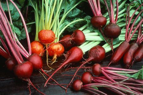 grow beets hgtv
