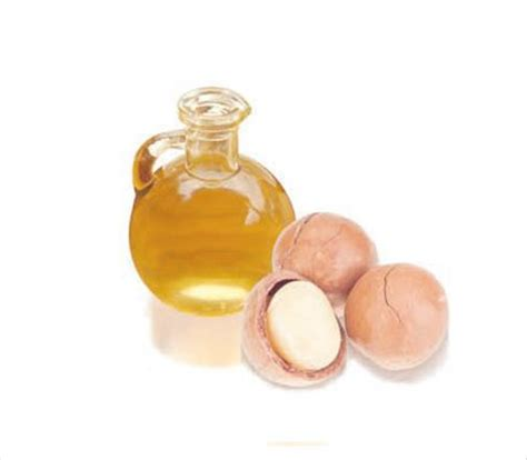 huile macadamia cuisine huile de macadamia bienfaits propri 233 t 233 s posologie