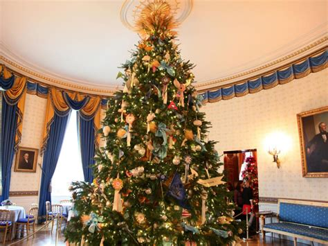 chridtmas tree home fertilzer a spectacular white house white house 2014 hgtv