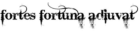 fortes fortuna juvat tattoo i m think of getting a that says quot fortes fortuna