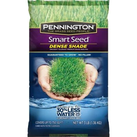 pennington smart seed 3 lb dense shade grass seed
