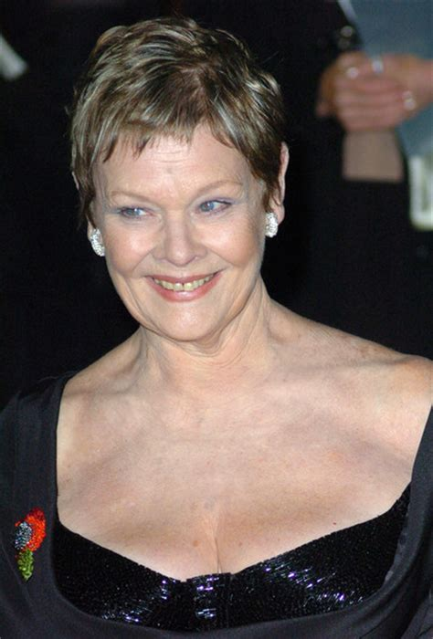 judy dench hairstyle front and back judi dench hairstyle front and back of head short short