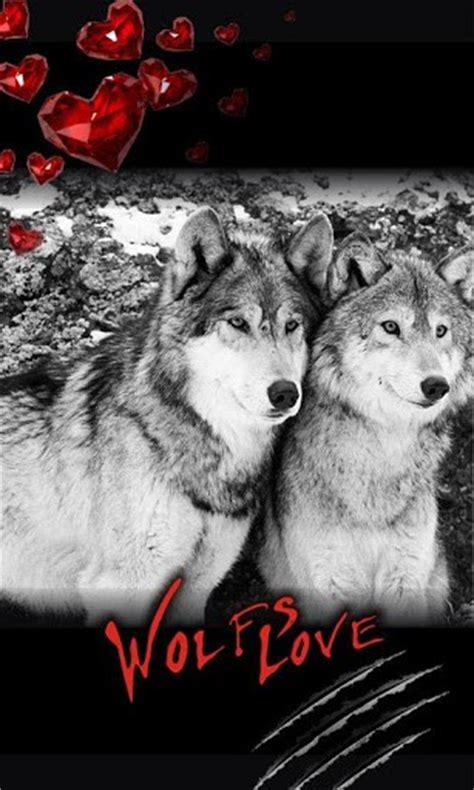 wolves  love wallpapers wallpapersafari