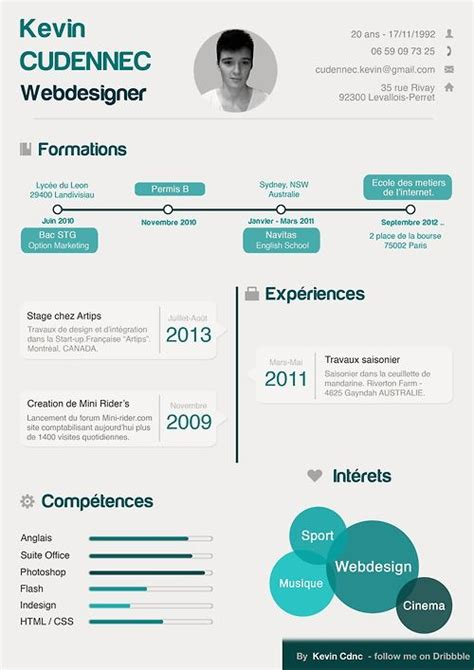 infographic resume template 25 best ideas about infographic resume on cv