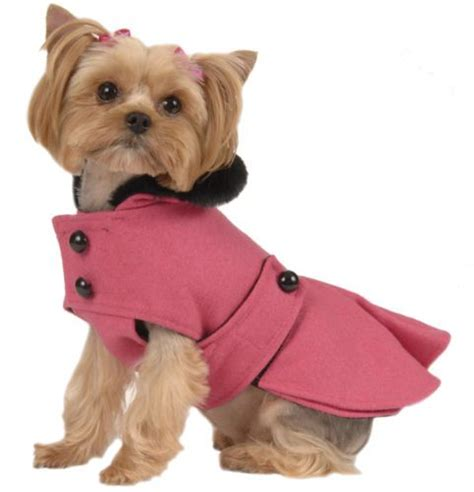 shirts for dogs best 25 small clothes ideas on pet clothes clothing and puppy
