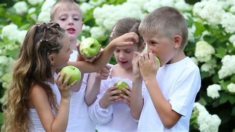 soap two girls and one boy two boys and two hold apples near blooming bush in summer garden stock footage