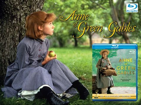 Of Green Gables Anniversary by The 1132 Best Images About Of Green Gables On