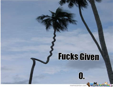 palm meme palm tree memes best collection of palm tree pictures