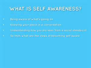 what is selves self awareness by shannon york