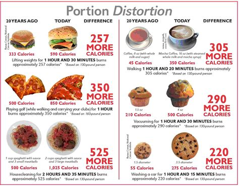 Dieting You The 5 Factor Diet by Food Portions The 1 Factor That Makes You Diet