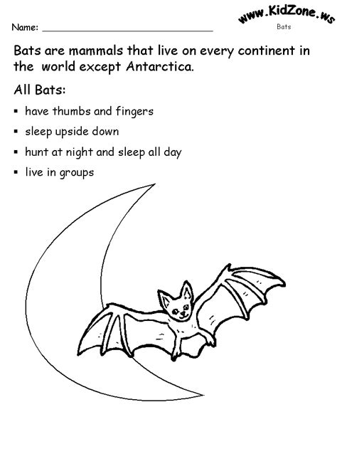 preschool bat coloring page kindergarten bat activities bat activity sheets about