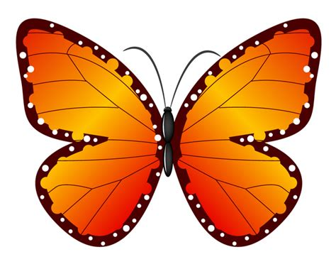 butterfly clipart free butterflies clipart pictures clipartix