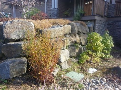 Landscape Supply Tigard Gallery Of Ideas Portland Rock And Landscape Supply