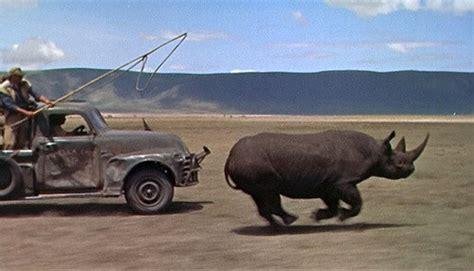 hatari truck tansania safari meine tipps zum arusha nationalpark