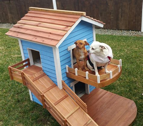 2 story dog house 6 swanky doghouses you ve gotta see to believe rover com