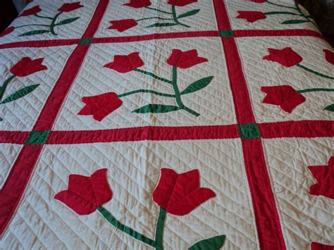Applique Quilt Patterns Traditional Tulip Applique Quilt Pattern Quilts