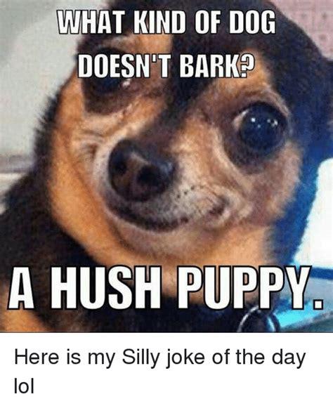 Joke Of The Day Meme