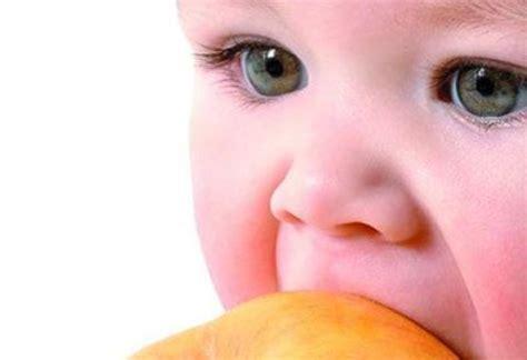 alimentos astringentes y laxantes alimentos astringentes o laxantes para nuestro beb 233