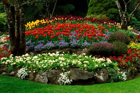 How To Design A Flower Garden Layout Photos Flower Garden Layout Ideas 11 Wonderful Flower Garden Ideas Image Inspirational