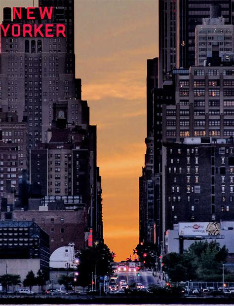 how to live in new york city thought catalog