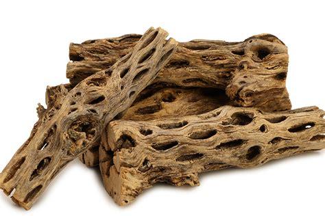 pieces   long natural cholla wood  aquarium