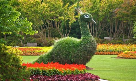 Botanical Gardens Summer C Summer At The Arboretum Visits Dallas Arboretum And Botanical Gardens Groupon