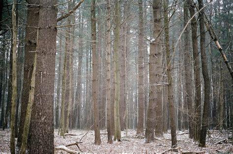17 best images about 2701 connecticut on pinterest 17 best images about winter in connecticut on pinterest