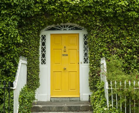 Feng Shui Colors For A Northeast Front Door Yellow Front Door Feng Shui