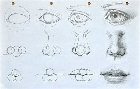 arte manga ojos nariz y orejas augen mund und nase zeichnen lernen dekoking diy