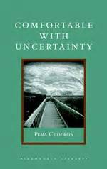 comfortable with uncertainty 8 of the best books on buddhism for beginners